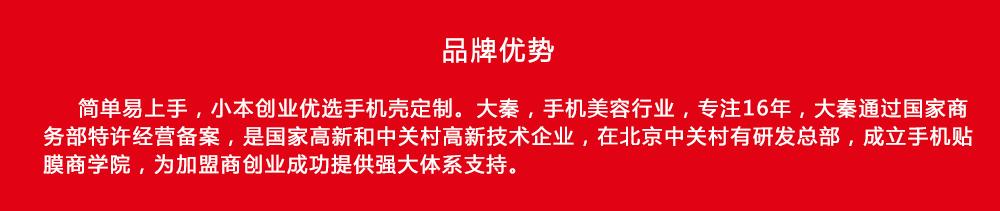 大秦手机壳个性定制品牌故事